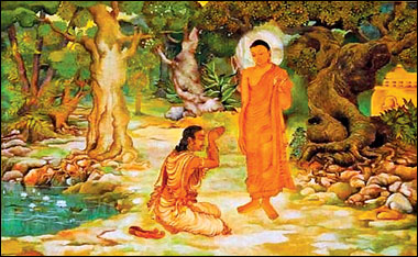 morton grove buddhist single men Finally, a place for single buddhists to connect with like-minded people & find a  long-lasting relationship start buddhist dating with elitesingles today.