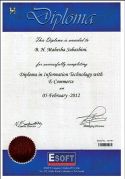 Information Technology business subjects in college